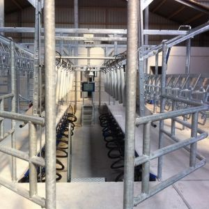 SAC melksystemen koe